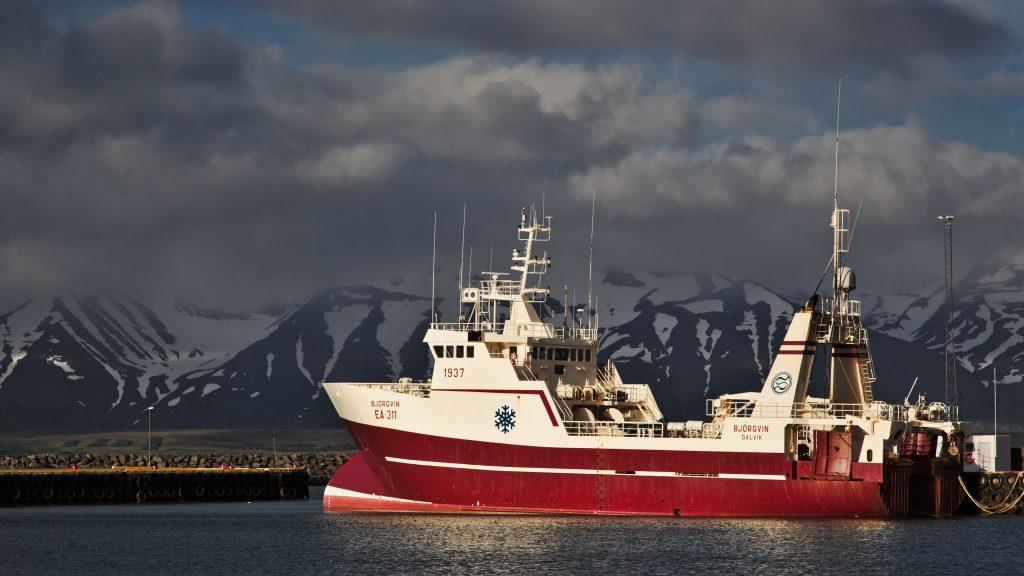 Dalvik Harbour